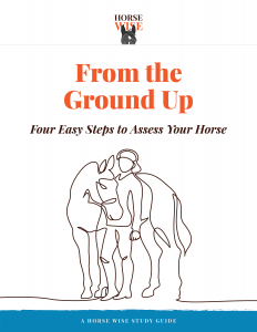 Horse Wise Study Guide